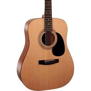 Cort AD810 OP akustična gitara
