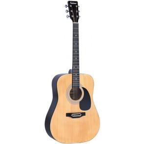 Falcon FG100EAN Electro-Acoustic