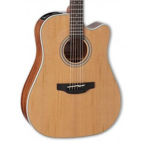 Takamine GD20CE-NS Natural